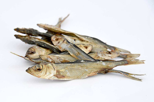 Aringa baltica