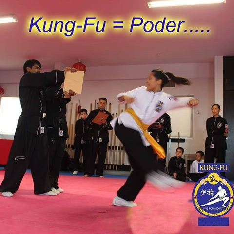 Kung Fu: offensive and defensive sports