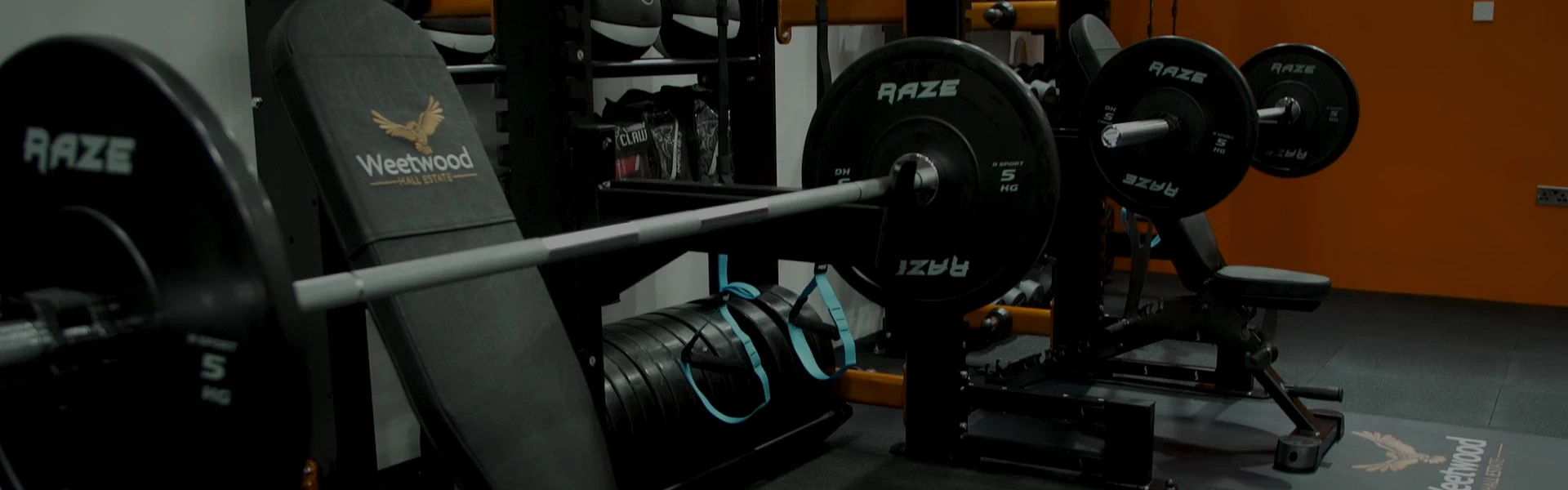Bench Press, Exercies Equipment