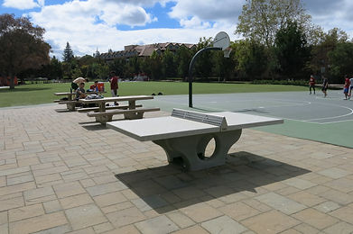 Concrete Tennis Tables for sale