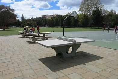 Concrete Tennis Tables for sale