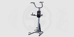 Power Tower With Aerobic Step - 3,900 EGP