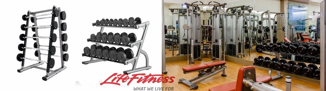 Dumbbell Rack, Bar Rack, Life Fitness