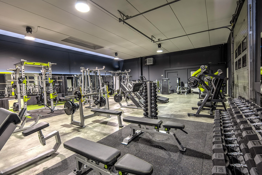 Gym Benches & Racks Equipment