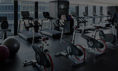 Cardio Gym Fitness, Treadmills, Bikes