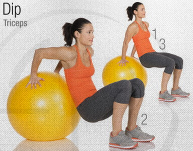 Tricep Dip Stability Ball Circuit Workout