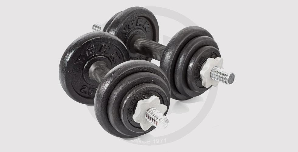 20 kg Cast Iron Dumbbell - 460 EGP