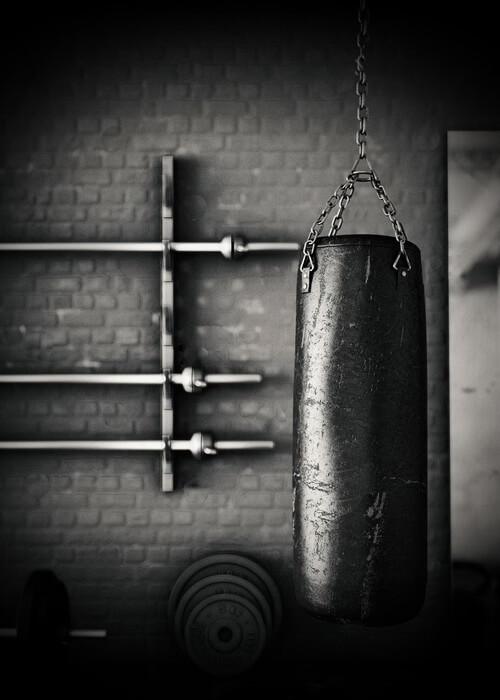 Boxing Gear & MMA Gear