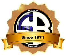 Logo BS Gold Since 1971