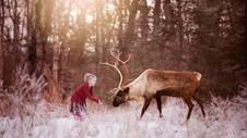 A girl & a reindeer