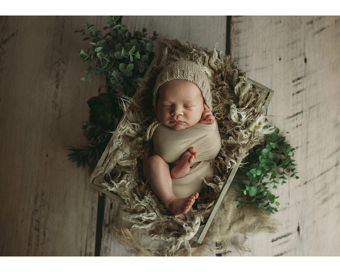 best newborn photography anchorage