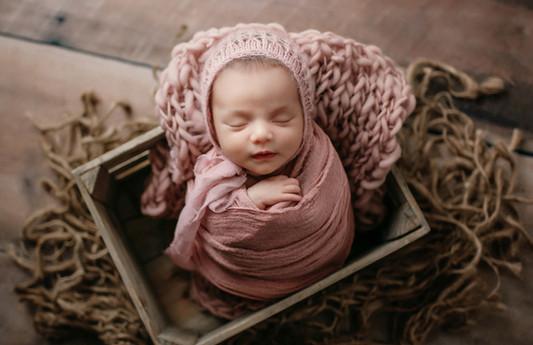 anchorage newborn photorapher