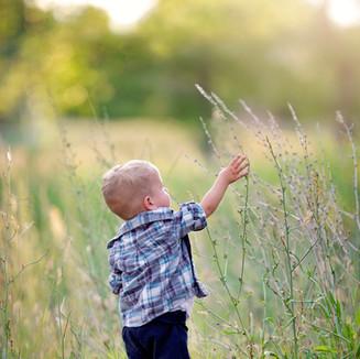 kids newborn photography willow alaska