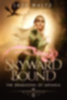 skyward bound ebook cover.jpg