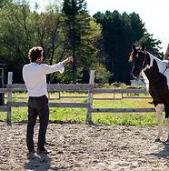 Paard%20met%20leerling%202_edited.jpg