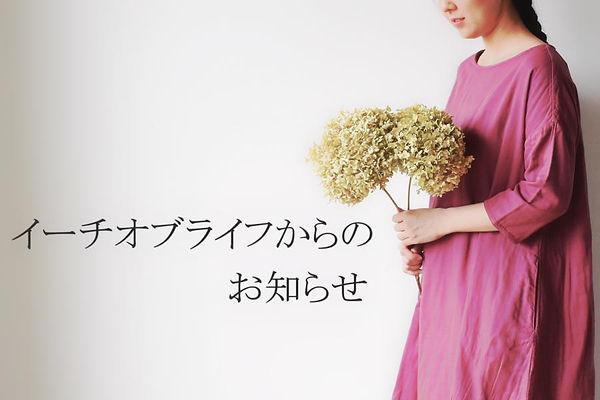 DSC_0128_Fotor.jpg
