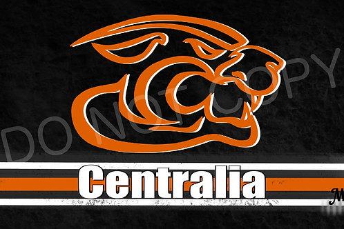 Centralia License Plate