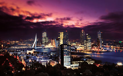 Dedicated Marketing | Marketing Services Rotterdam