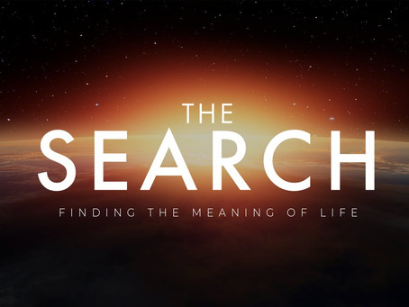 The Search Series for Adults!