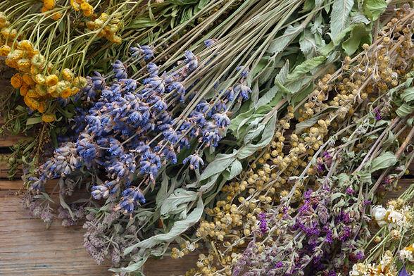 Bunch of healing herbs on wooden board.