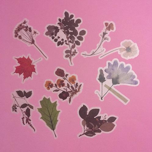 Autumnal Art Journaling Velum Stationary Stickers