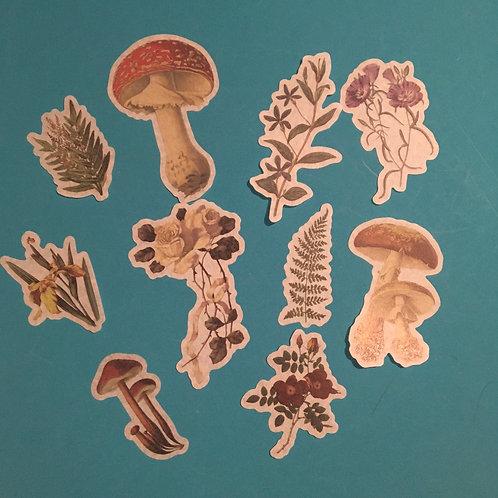Nature Art Journal Velum Stationary Stickers