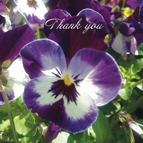 Thank you Greeting card. Photographic Card. Pansy