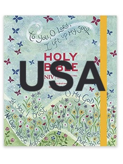USA delivery NIV Hannah Dunnett Journaling Bible