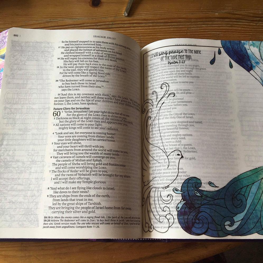 Inspire Praise Bible New Living Translation Nlt Journaling Bible