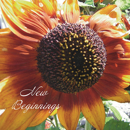 New beginnings Greeting Card. Photographic Sunflower