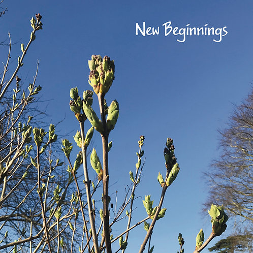 New beginnings Greeting Card. Photographic Spring Buds.