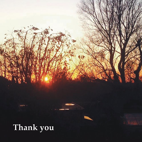 Thank you Greeting card. Photographic Card. Sunset