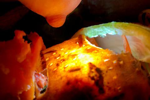 Food Photo - 80.jpg