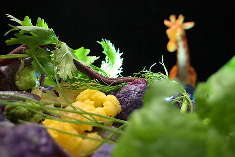Food Photo - 14.jpg