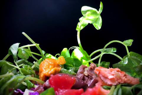 Food Photo - 43.jpg