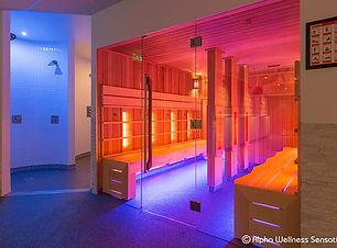 complexe sauna et cabine infra rouge.jpg