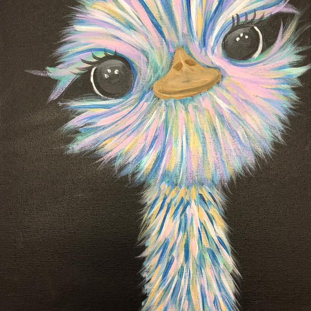 Adorable Ostrich