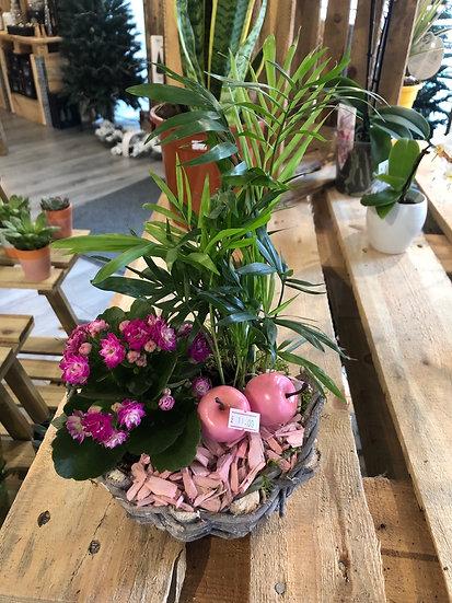 Pink flowering gift basket