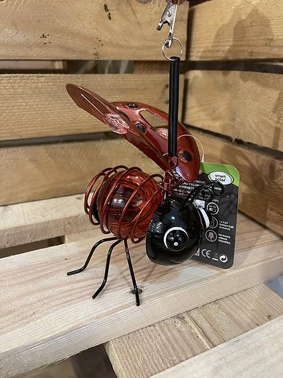 Solar bug ladybird