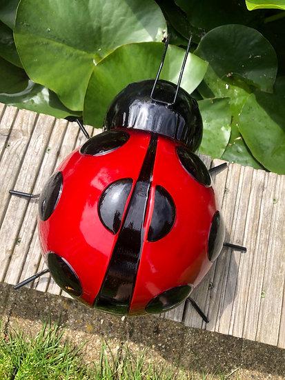 Giant wall art ladybird