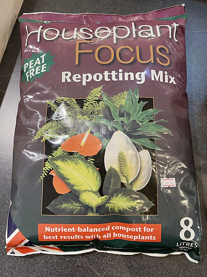 House plant focus reporting mix 8ltr