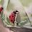 Thumbnail: Ladybird folding umbrella