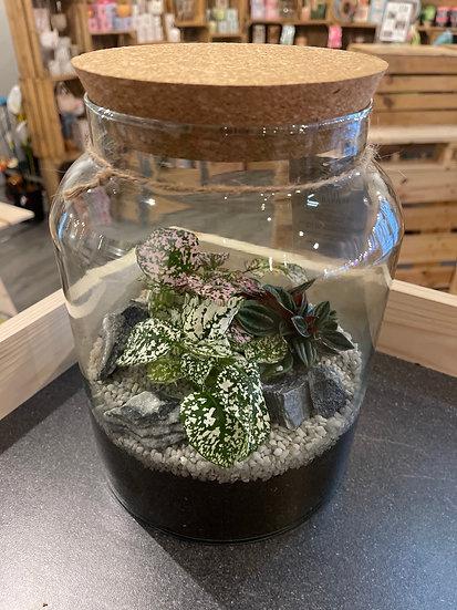 5L terrarium with grey gravel