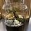 Thumbnail: 5L terrarium with baby bonsai/pink fittonia