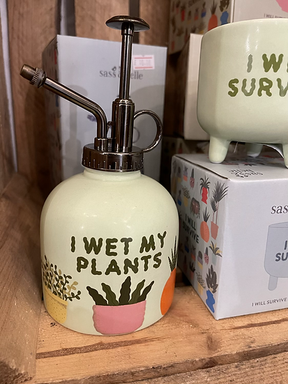 I wet my plants plant mister