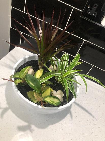 HAND MADE houseplant planter 1
