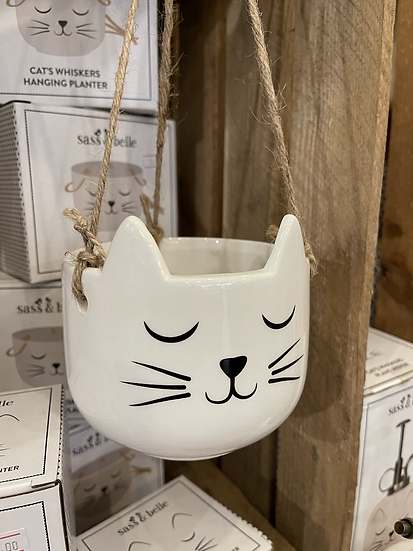 Cat whiskers hanging planter