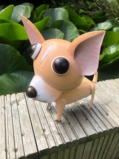 Chico dog
