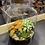 Thumbnail: Light up tall terrarium natural gravel orange/green