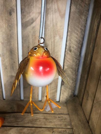 Small springy robin